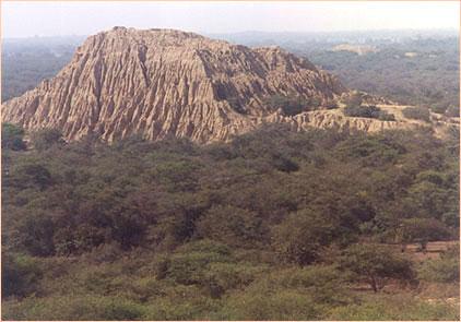 20051202163221-huaca-rodillona-enbosque-pomac.jpg